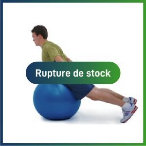 Actiforme - Ballon suisse - rupture